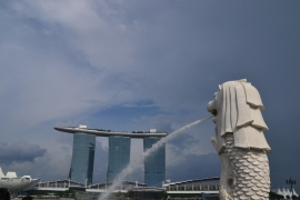 <h5>Marina Bay Sands</h5>